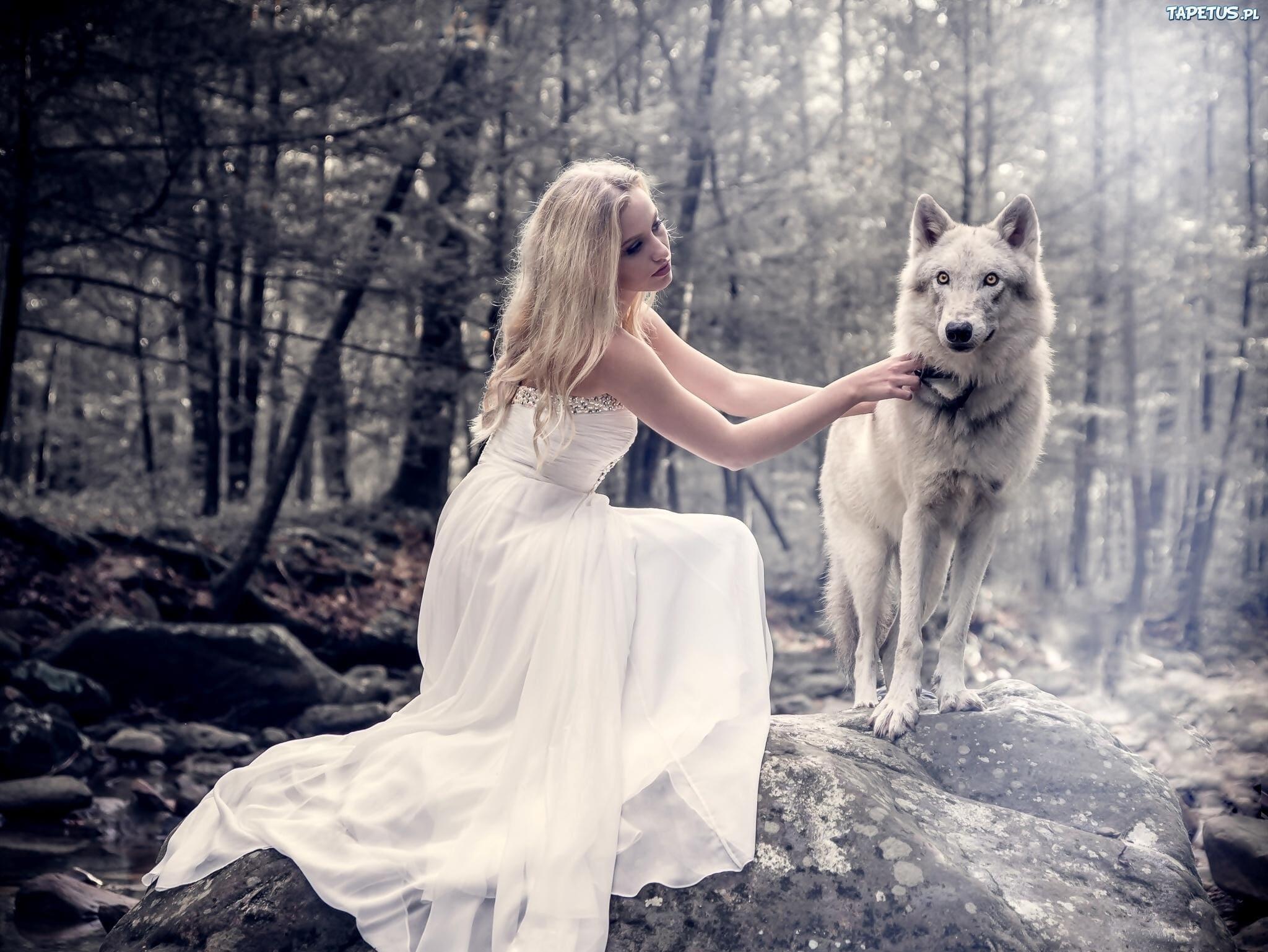 obrazki n 214389 kobieta suknia las kamienie wilk