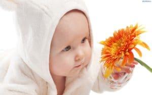74183 dziecko kwiat 300x188