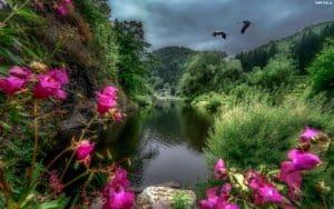 254883 rzeka kwiaty drzewa gory bociany pochmurny dzien 300x188